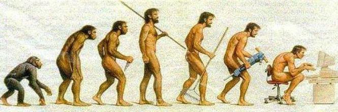 Il tuo mal di schiena ha a che fare con l'evoluzione della specie umana